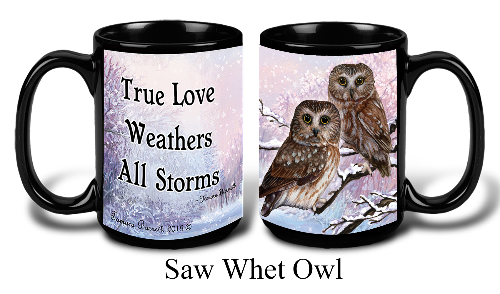Saw Whet Owl Winter Mugs image
