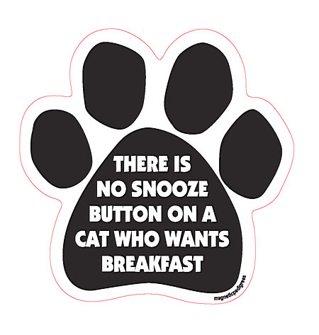 There Is No Snooze Button On A Cat Who Wants Breakfast - Paw Magnet Image